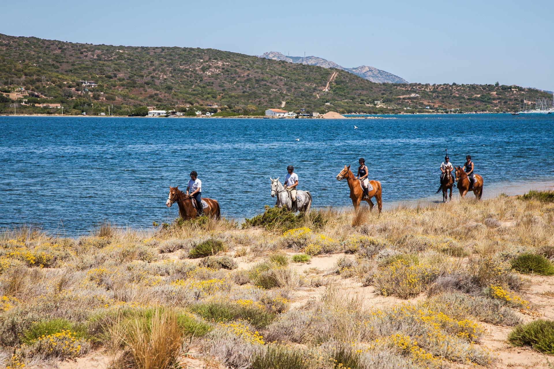 Horse Riding Holiday Activities at Casa Pantaleo Sardinia